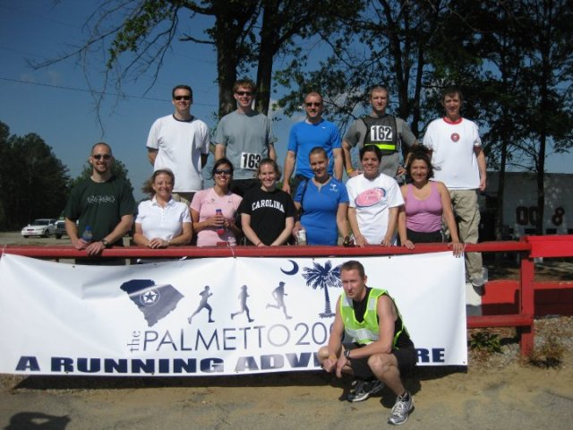 palmetto 2010